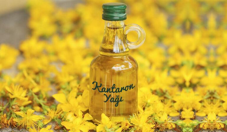 hypercium perforatum oil (kantaron yağı) Nedir ?, Ne işe yarar?